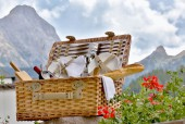 The Best of the Dolomites: Hiking and Gourmet