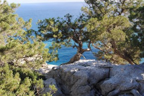 Hike Sardinia From Mountain to Sea