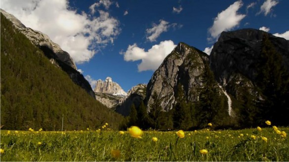 Visit Monte Croci di Comèlico Pass