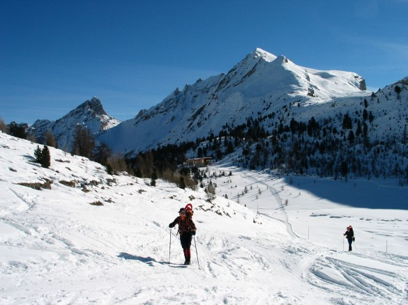 Snowshoeing Adventure in the Natural Park Fanes-Sennes-Braies