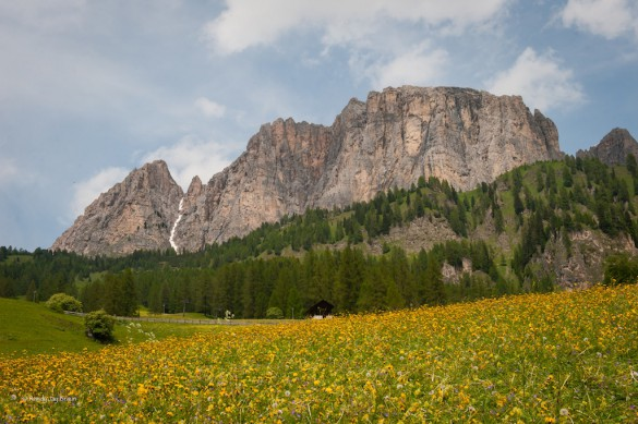 Hiking Experience in the Dolomites