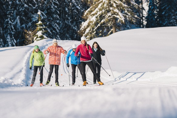 Cross-Country Skiing Trip Activity Levels