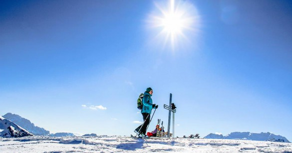THE TELEGRAPH - Ski and Snowboard