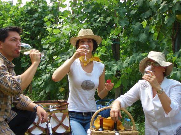Exploring Prosecco: Northern Italy's Sparkling Wine Region