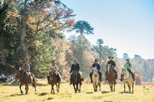 FINANCIAL TIMES - The wild south: on horseback in a Patagonian estancia