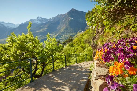 Discovering Merano, Val Venosta and Lake Garda