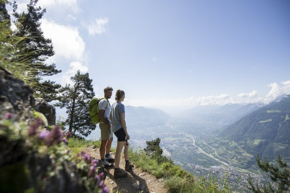 Bolzano and Merano Hiking Adventure