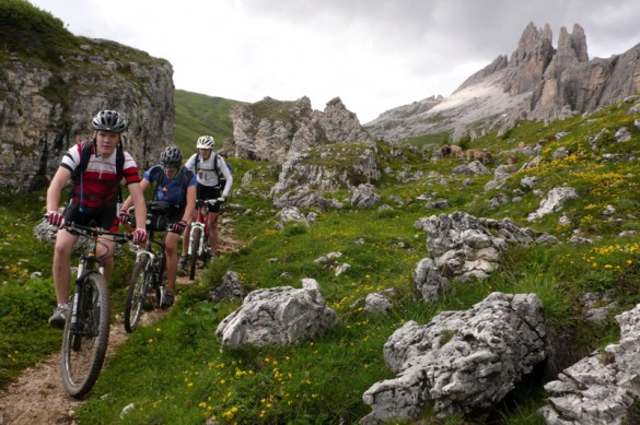 Multisport Mountain Adventure: Hike, Climb, Bike, and Bond!